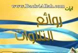 سورة فاطر- الشيخ خليفة الطنيجي